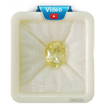 Yellow Sapphire Sup-Pre 14+ 8.55ct